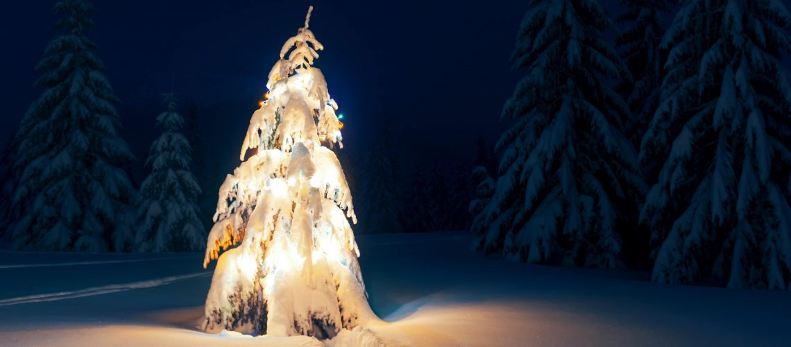 christmas-tree-with-lights-bannerCOMPRESS